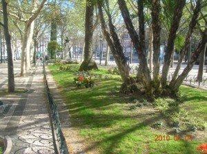 Copie-de-LISBONNE-Clivia-31-300x224
