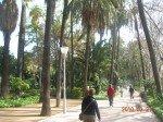 Copie-de-Paseo-del-parque-3-150x112